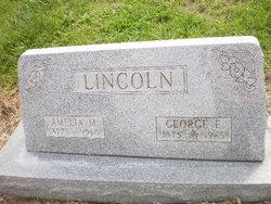 Amelia M Lincoln