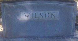Daisy <I>Holler</I> Wilson