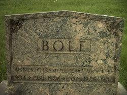 Agnes G Bole