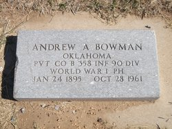 Andrew A Bowman