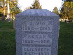 Sarah Shull