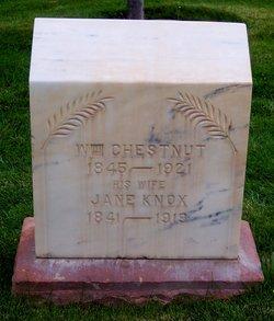 William M Chestnut