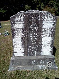 Mary E.   A. <I>Lanier</I> Patrick
