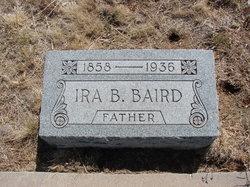 Irachus Bee Baird