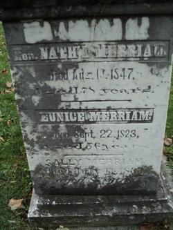 Nathaniel Merriam
