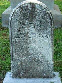 Mary Ann <I>Gaul</I> Colflesh