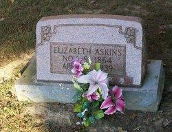 Sarah Elizabeth <I>Phillips</I> Askins