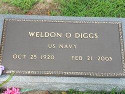 Weldon Owen Diggs