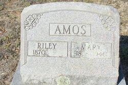 Mary <I>Nelson</I> Amos