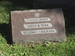 David B York