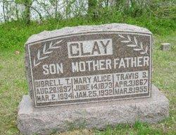 Mary Alice <I>Parrish</I> Clay