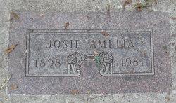 Josie Amelia <I>Jenson</I> Banister