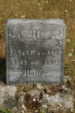 Sarah Elizabeth <I>Garrett</I> Moore