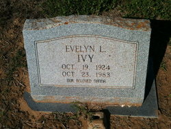 Evelyn L Ivy