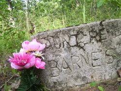 "Sirena ""Rene"" <I>Tosh</I> Barnes"