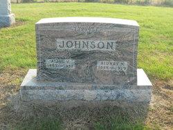 Sidney N. Johnson
