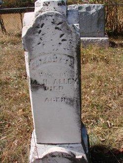 Elizabeth Isabel <I>Perdue</I> Alley