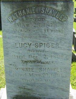 Lucy <I>Spicer</I> Shawler