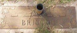 Albert Sylvester Briscoe
