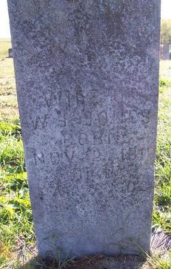 """Mary M. """"Polly"""" <I>Lollar</I> Jones"""