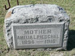 Amelia Louise <I>Hoffman</I> Pieschel