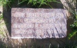 Amy Elizabeth Olsen