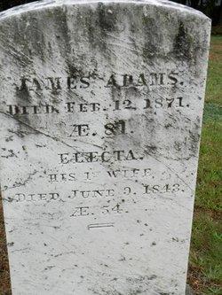 Electa Adams