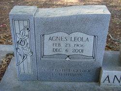 Agnes Leola <I>Ervin</I> Andrews