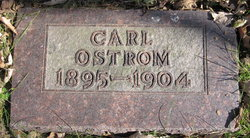 Carl Rienhart Ostrom