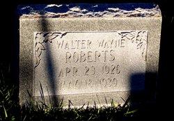 Walter Wayne Roberts