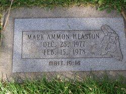Mark Ammon Heaston