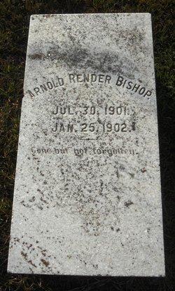 Arnold Render Bishop
