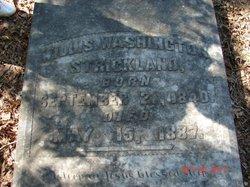 Willis Washington Strickland
