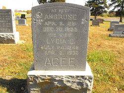 Ambrose Amos Agee