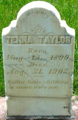 Tenna Taylor