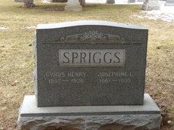 Josephine <I>Clements</I> Spriggs