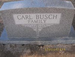 Harold Frederick Busch