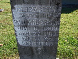 Elizabeth Catherine <I>Moore</I> Anderson