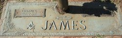 Annie L <I>Jackson</I> James