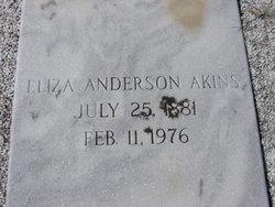 Eliza <I>Anderson</I> Akins