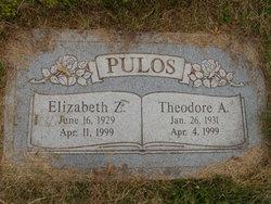 Theodore A Pulos