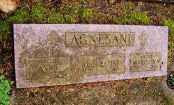 Annie Agnesani