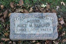 Alice M Bracher