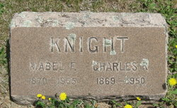 Charles R Knight