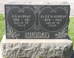 Alice W Murray