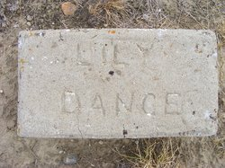 Lily Dance