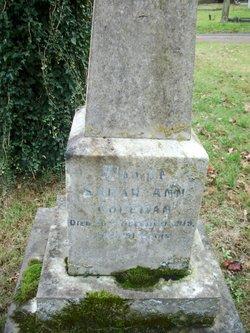 Sarah Ann Coleman