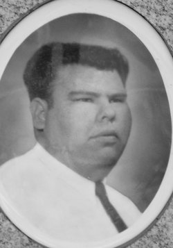 Vidal Estrada Briseno, Jr
