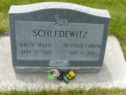 Haylie Marie Schledewitz
