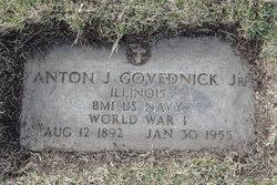 Anton J Govednik, Jr